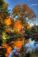 Autumn reflections by AngelsOdyssey