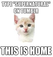 SUPERNATURAL FAN MEME2 by Niiffe