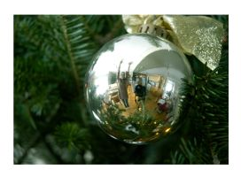 Ornament Reflection by Straynj3