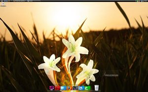 Desktop June by SaintMichael