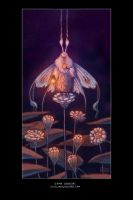 Moth's Light - digital color and animation link by emmalazauski