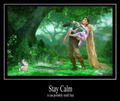 Tangled - Stay Calm by NSCosplay
