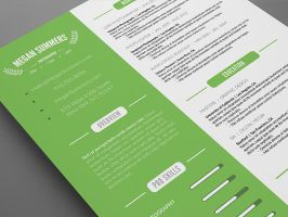 Clean Resume - Photoshop PSD Template by CursiveQ-Designs