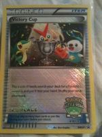Kiba Wolff's Victory Cup Card by furguylover