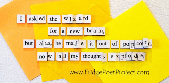 The Daily Magnet #315 - BOP by FridgePoetProject