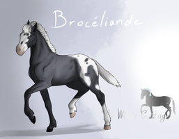 Broceliande foal by The-White-Cottage