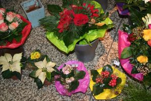 flowers at christmastime 3 by ingeline-art