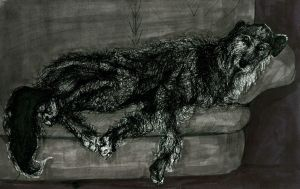 Deerhound on the couch by UgaraBorzoi