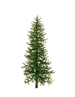 Decorate this tree by hallbe