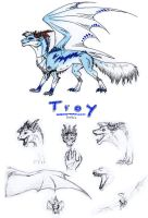 Troy the Zakai by Dreikaz