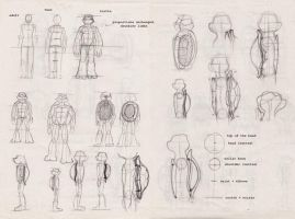 TMNT: Proportion Studies by GwenIala