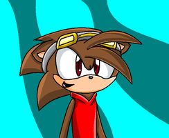 Request Copper The Hedgehog by loue1