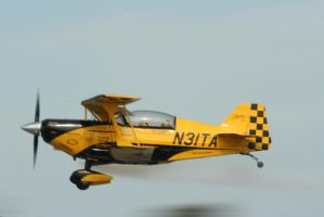Pitts Special Fast and Low by Kippenwolf