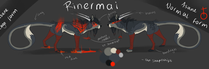 Rinermai reference by Rinermai