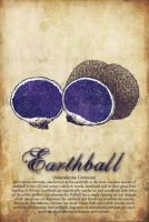 Earthball by turp