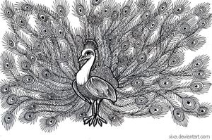 peacock by sushy00