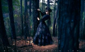 Wicked Witch of the Pines 2 by Laura-Ferreira