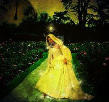 Fairy Tale: Cinderella by Randoms-Foundling