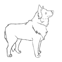 Border Collie Set Lineart - VP by days-disappear