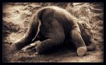 jumbo hangover by child-stainless