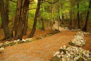 Rockwood Forest WP by chirilas