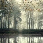 Autumn Whispers by Oer-Wout
