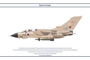 Tornado GB 15 Sqn 1 by WS-Clave