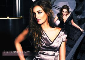 Leighton Meester by DDenaa