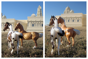 Breyer - Visit To The Sacred Temple by The-Toy-Chest