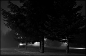 Colorless Morning I by urnightmare