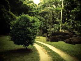 Pathway by think0