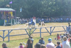 King Richard's Fair, Jousting To Hit the Target 5 by Miss-Tbones