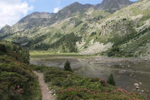 Pyrenees by zebree
