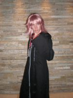 Marluxia by Axras