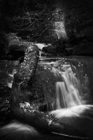 Mill Gill Force II by Elmik5