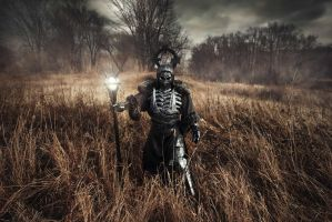 The Witcher - Wild Hunt General cosplay by alberti