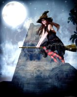 Witch on a Broom by sweetcivic