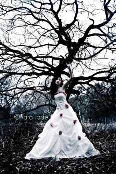 The Moribund Tree by larafairie