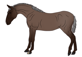 RR Kennels Lusitano Design 2 by DragonicWhispers