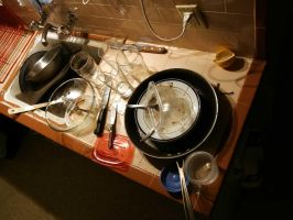 Dishes by fl8us