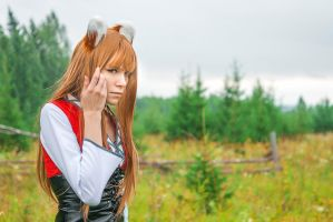 Horo - Spice and Wolf by Gekidan