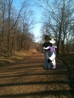 Romantic Walk with LoneWolfLuke by PocketOpossum