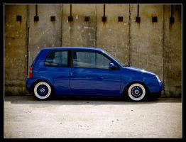 Lupo - BBS 1 by Andso