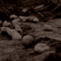 Path by tabouret