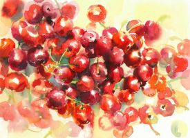 cherries by kalinatoneva