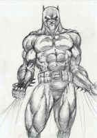 Batman Pencile2 by dushans