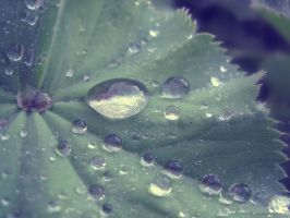 Water Drop. by Sparkle-Photography