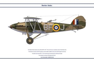 Audax GB 28 Sqn by WS-Clave