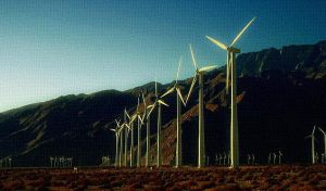 inherit the wind. by socaltimes