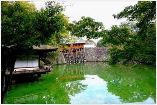 Green Japan by point-cardinal
